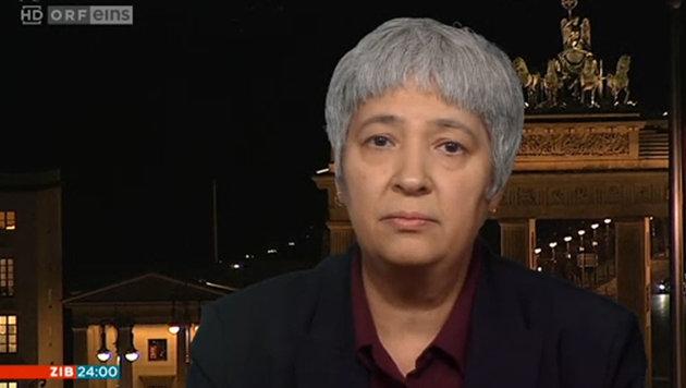"""""""Kurz hat bei den Islam-Kindergärten recht"""" (Bild: Screenshot ORF)"""