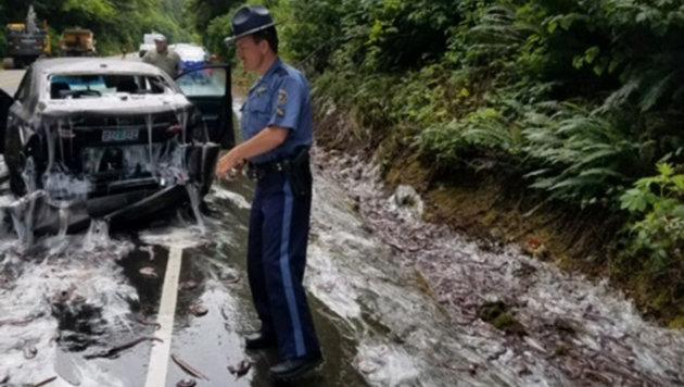 Die Bilder vom Unfallort erinnern an einen Horrorfilm. (Bild: Oregon State Police)