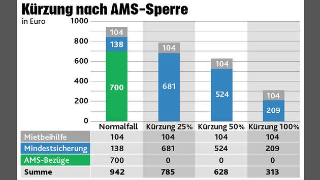 AMS-Kürzungen: Teurer Fehler bleibt bis 2018