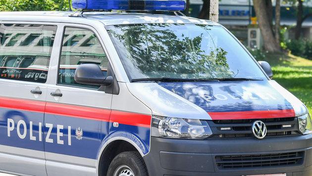 Polizisten verhinderten die Weiterfahrt des schwer betrunkenen Buslenkers (Bild: © Harald Dostal / 2017)