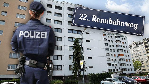 Beißattacke auf Beamtin: Journalistin suspendiert (Bild: Klemens Groh, Peter Tomschi, krone.at-Grafik)