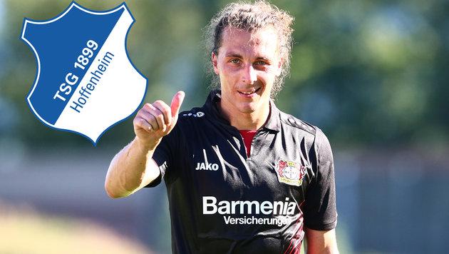 Hoffenheim angelt nach ÖFB-Kapitän Baumgartlinger (Bild: GEPA)