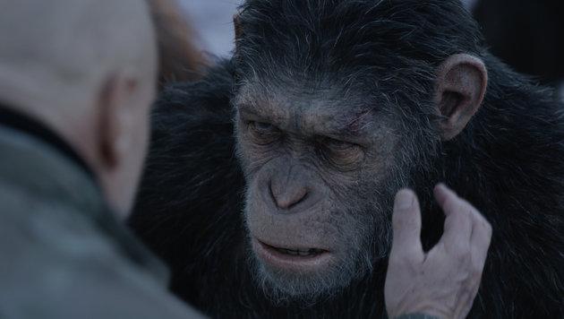 Jetzt geht's ums Überleben: 'Planet der Affen 3' (Bild: 20th Century Fox)
