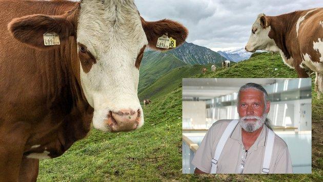 FH-Professor Walter Welzl warnt vor zu viel Antibiotika-Einsatz in der Landwirtschaft. (Bild: Melanie Hutter, FH OÖ)