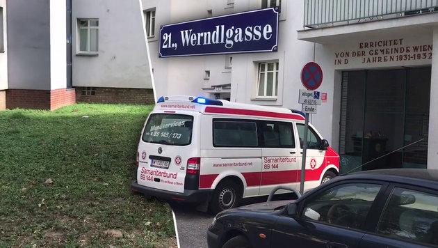 Wien: Baby stürzt fünf Meter tief aus Fenster (Bild: Andi Schiel, krone.at-Grafik)