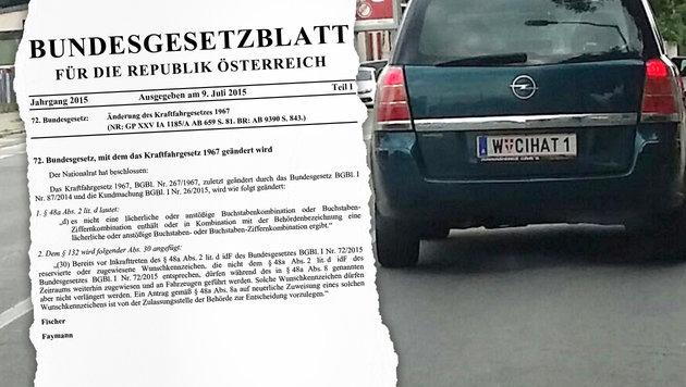 """""""Dschihad-Kennzeichen"""" sorgt in Wien für Aufregung (Bild: krone.at-Grafik)"""