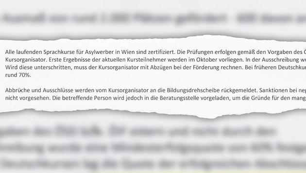 Der Fonds Soziales Wien bestätigt, dass Flüchtlingen keine Sanktionen bei Misserfolg drohen. (Bild: Krone)