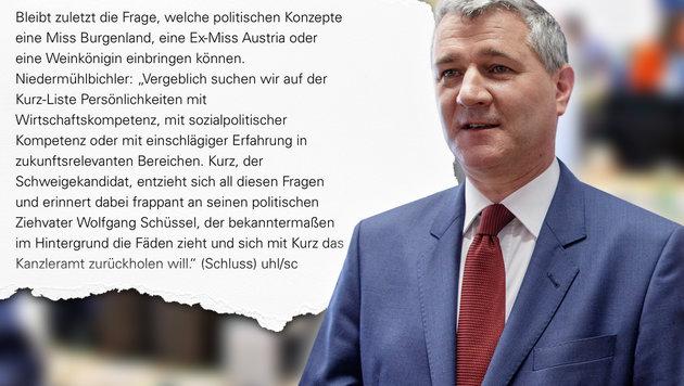 """Angriff auf Ex-Miss sorgt für neuen Eklat in SPÖ (Bild: APA/GEORG HOCHMUTH, """"Krone"""", krone.at-Grafik)"""
