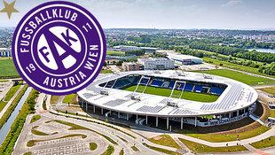 Austria spielt gegen Osijek in EL vor vollem Haus (Bild: GEPA)