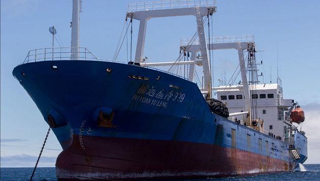 An Bord dieses Schiffes fand man mehr als 6600 Haie. (Bild: AFP)