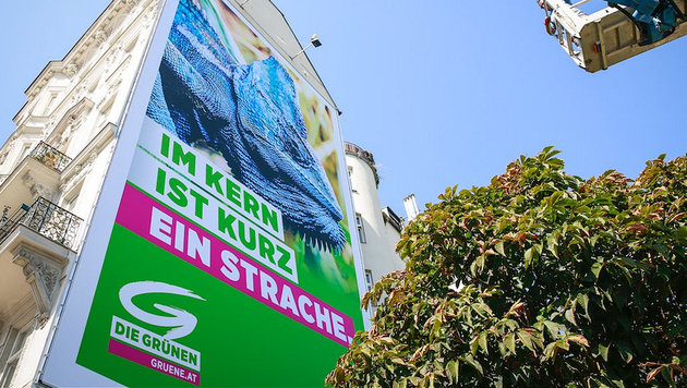 Grünes Mega-Plakat: Im Kern ist Kurz ein Strache (Bild: twitter.com)