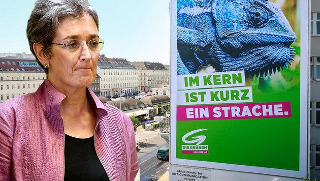 Grünes Mega-Plakat: Im Kern ist Kurz ein Strache (Bild: twitter.com, APA/BARBARA GINDL, krone.at-Grafik)