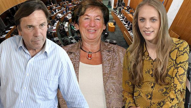 Steirischer Ex-Landeshauptmann Franz Voves, verstorbene Innenministerin Liese Prokop, Kira Grünberg (Bild: APA, krone.at-Grafik)