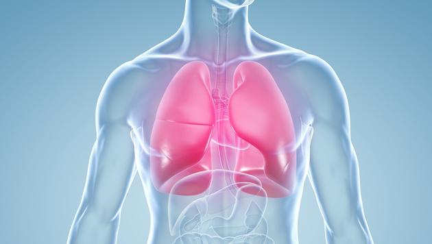 Lungenentzündung - die 5 gefährlichsten Mythen (Bild: ag visuell/stock.adobe.com)