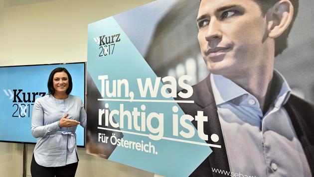 """Neue Plakatwelle: ÖVP will """"zurück an die Spitze"""" (Bild: APA/HANS PUNZ)"""
