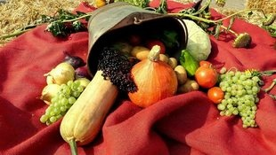 Wir suchen die schönsten Herbstfotos unserer Leser (Bild: Christa Posch)