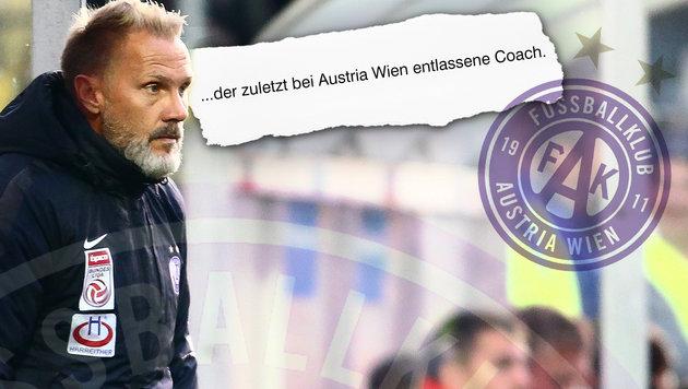 """Fink """"entlassen"""": Patzer von deutschem Medium! (Bild: GEPA, sport.de, krone.at-Grafik)"""