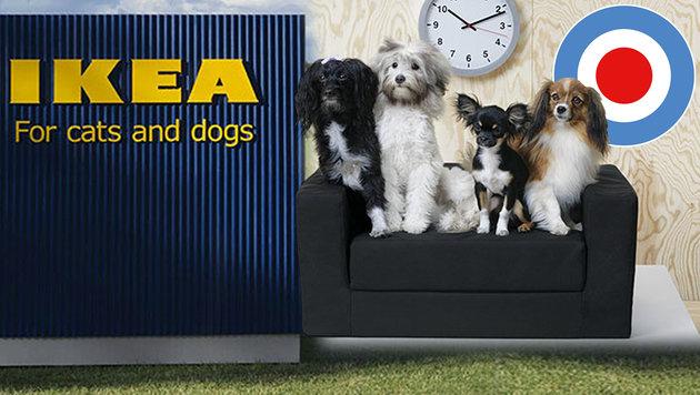 echt tierisch ikea f r hund und katz 39 bald in wien. Black Bedroom Furniture Sets. Home Design Ideas