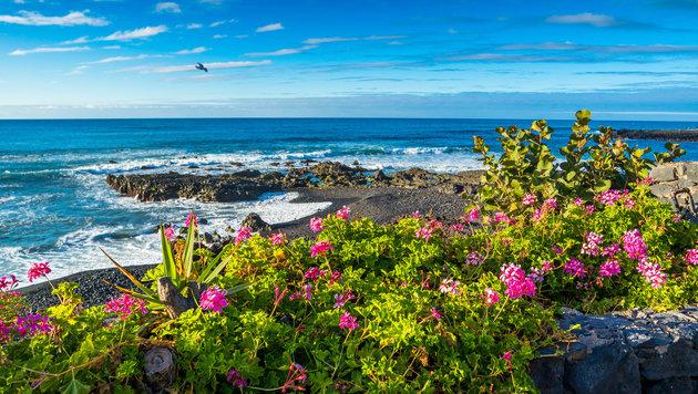 Teneriffa - Eine Insel für alle (Bild: stock.adobe.com)