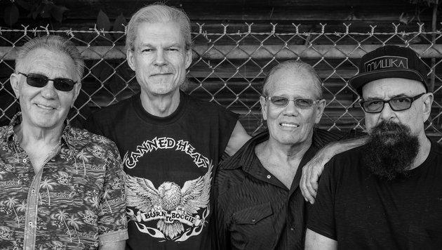 Canned Heat: Die wildeste Rockband aller Zeiten (Bild: Canned Heat)