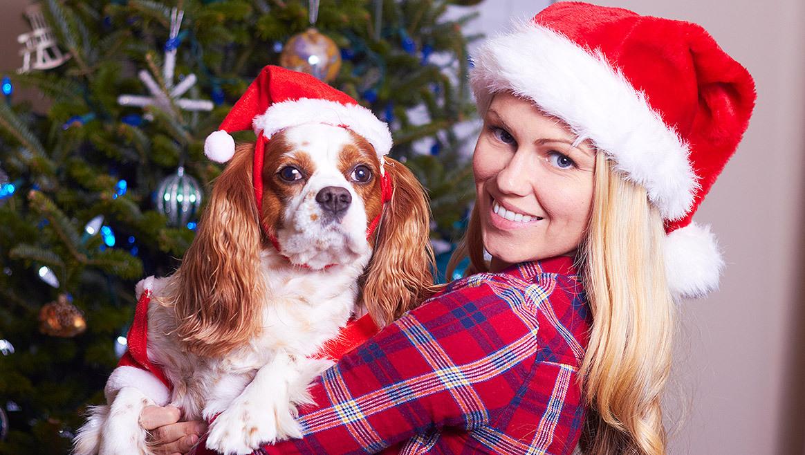 Erster Hunde-Weihnachtsmarkt Wiens eröffnet!  (Bild: thinkstockphotos.de)