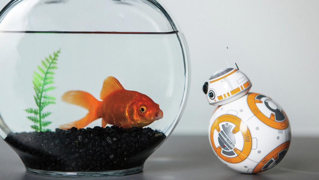 """10 geile Gadgets für """"Star Wars""""-Fans!  (Bild: Lucasfilm)"""