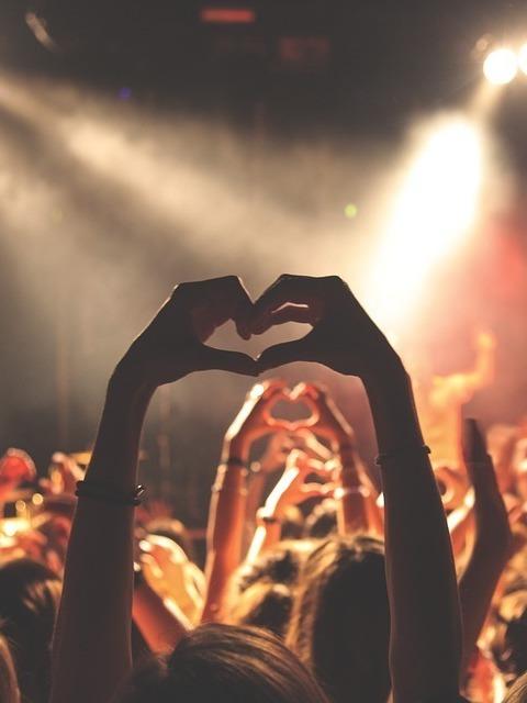Das Ottakringer Vinyl & Music Festival (Bild: Pixabay)