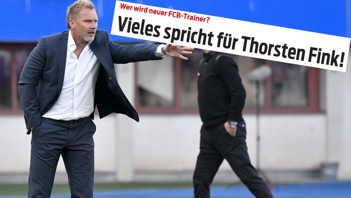 Medien: Fink