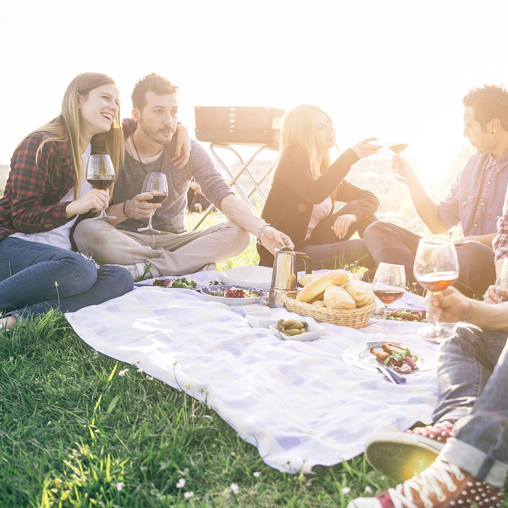 Top 6: Die besten Picknick-Spots in Wien (Bild: thinkstockphotos.de)