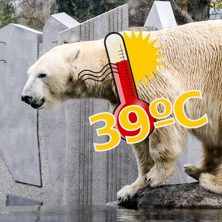Die coolsten Orte für heiße Tage in Wien (Bild: Pixabay)