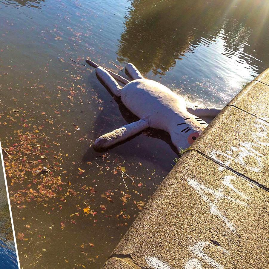 Wien: Riesen Stofftier im Donaukanal gesichtet (Bild: Vanessa Licht)