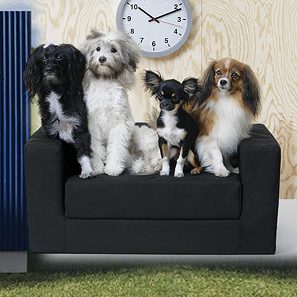 Echt tierisch: IKEA für Hund und Katz' (Bild: IKEA)