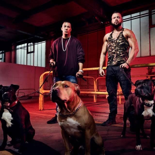 Kollegah & Co.: Dürfen Deutsch-Rapper alles? (Bild: Kollegah)
