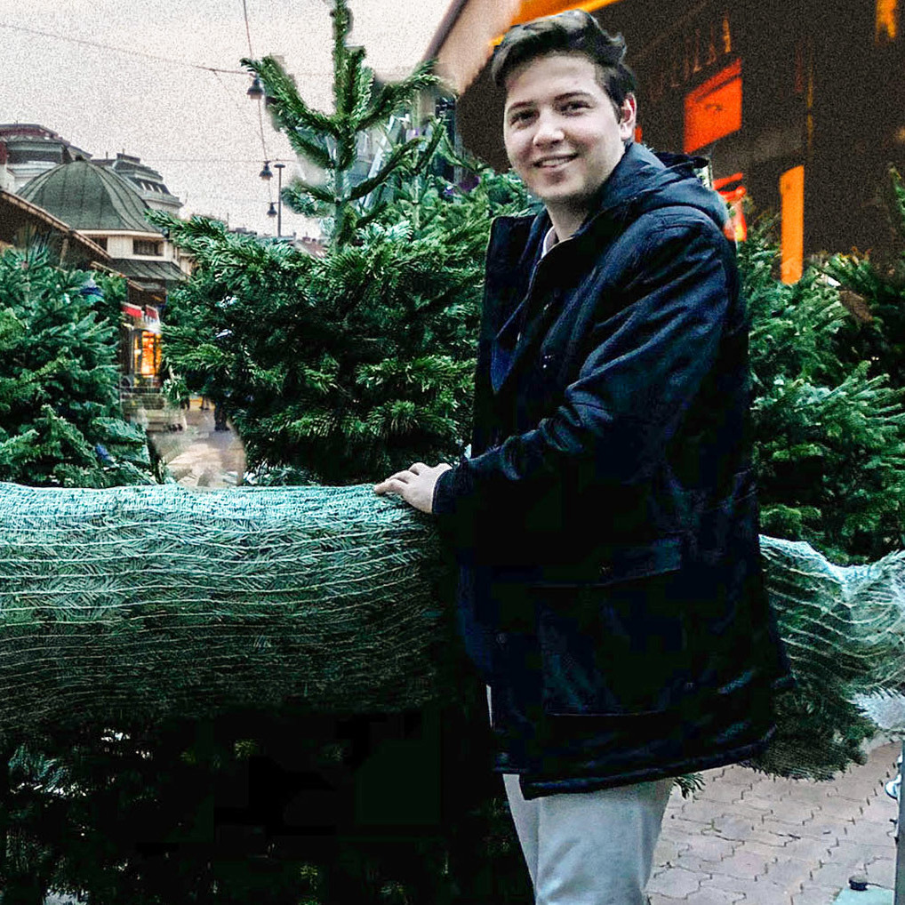 Wiener liefern Christbaum um 1€ nach Hause (Bild: Taskrookie)