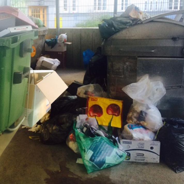 Wiener Gemeindebau verkommt zur Mülldeponie (Bild: Viktoria Graf)