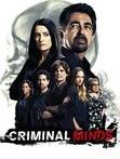 20:15 Criminal Minds
