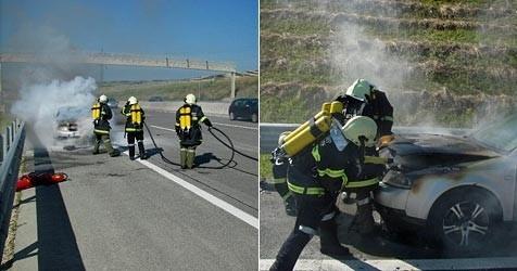(Bild: Autobahnpolizei)