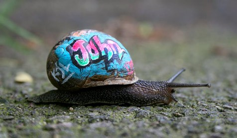 (Bild: slinkachu/intercitysnail.blogspot.com)