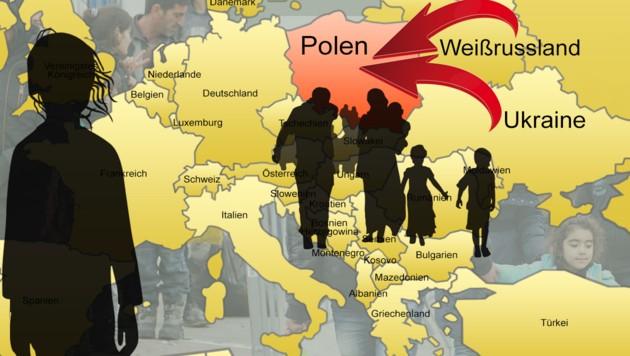 """Vor allem Ukrainer und Weißrussen nutzen die Möglichkeit, Polens """"Greencard"""" zu erhalten. (Bild: stock.adobe.com, Sepp Pail, krone.at-Grafik)"""