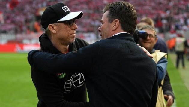 Köln-Trainer Peter Stöger und Gladbach-Coach Dieter Hecking (Bild: APA/dpa/Federico Gambarini)