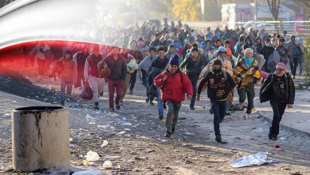 (Bild: APA/AFP/Rene Gomolj, thinkstockphotos.de, krone.at-Grafik)