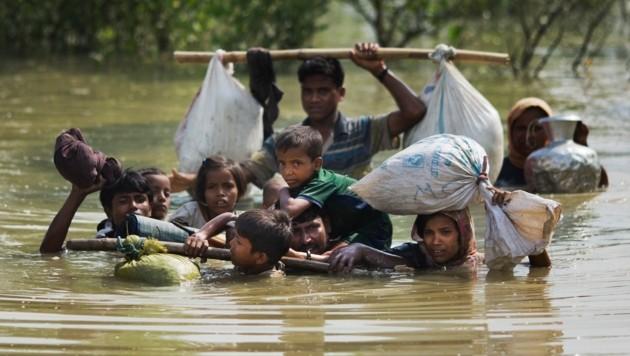 Geflohene Rohingya kurz vor der Grenze zu Bangladesch (Bild: AP)