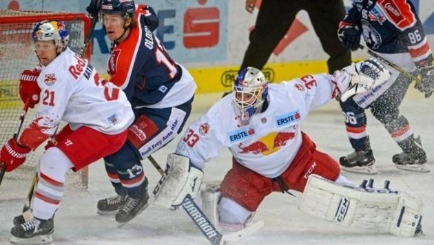 Bobby Raymond (li.) und Goalie Luka Gracnar, der nach dem 1:1 nichts mehr zuließ. (Bild: GEPA pictures/ Hans Osterauer)