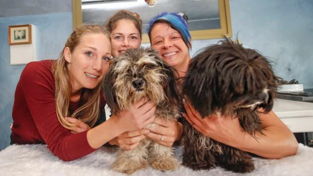 Christina Flatscher, Beatrix Rambauske und Bettina Schmid mit den Hunden. (Bild: Markus Tschepp)