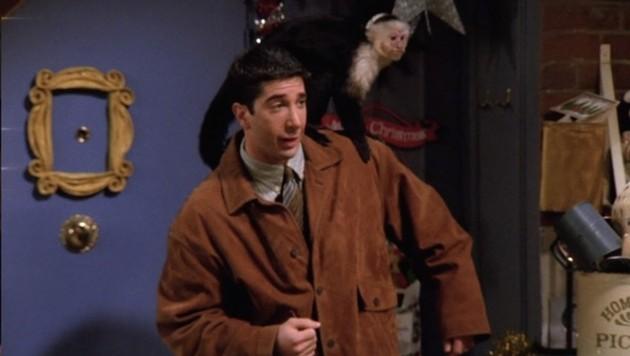 """Marcel"" in ""Friends"" (Bild: NBC)"