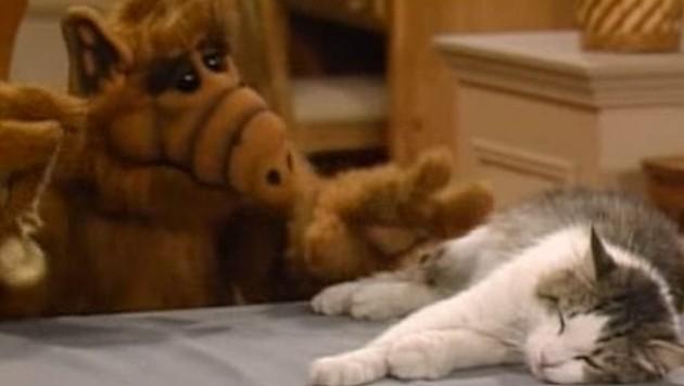 """Lucky"" in ""Alf"" (Bild: YouTube.com)"