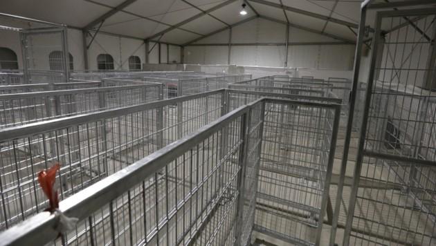 Das Leitsystem im Inneren der Zelte (Bild: Klemens Groh)