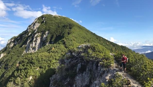 Blick in Richtung Gipfel (Bild: Hannes Wallner)