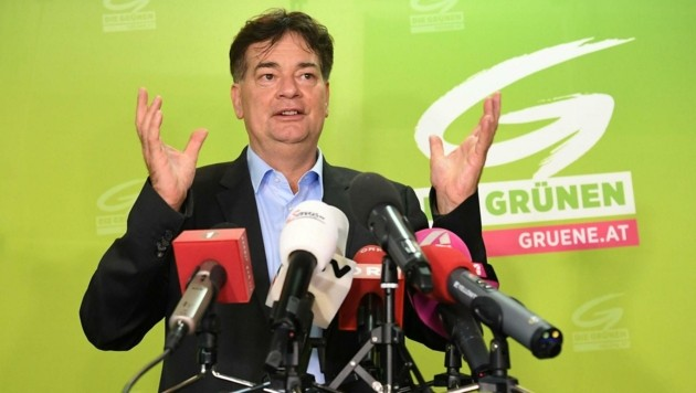 Der grüne Bundessprecher Werner Kogler (Bild: APA/Helmut Fohringer)