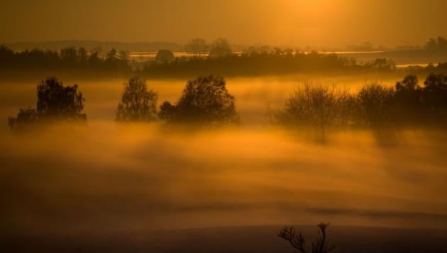 (Bild: APA/dpa-Zentralbild/Jens Bttne)